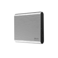 Pro Elite USB 3.1 Gen 2 Type-C 250GB Portable SSD - Silver Brush
