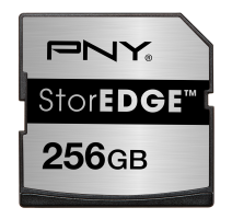 StorEDGE 256GB